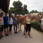 Psicoterapia y Coaching con caballos. Valencia Ciclo 2 FETE.
